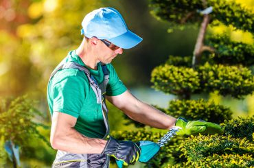 How to Upsell Your Lawn Care & Landscaping Services