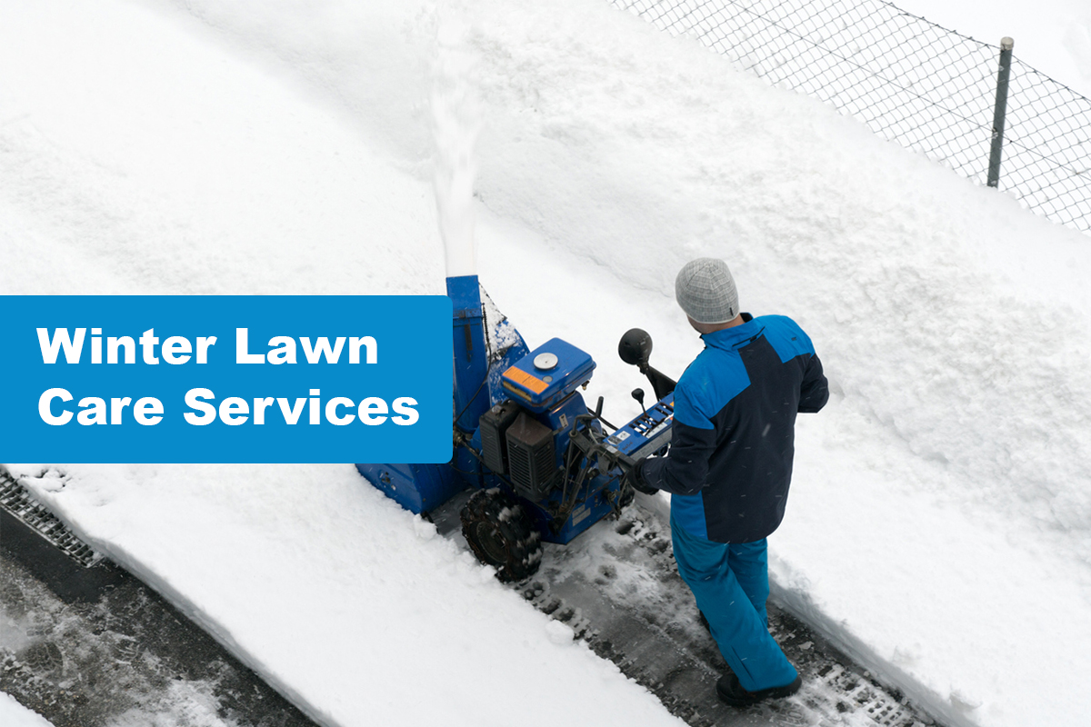 Lawn Care Services To In The Winter