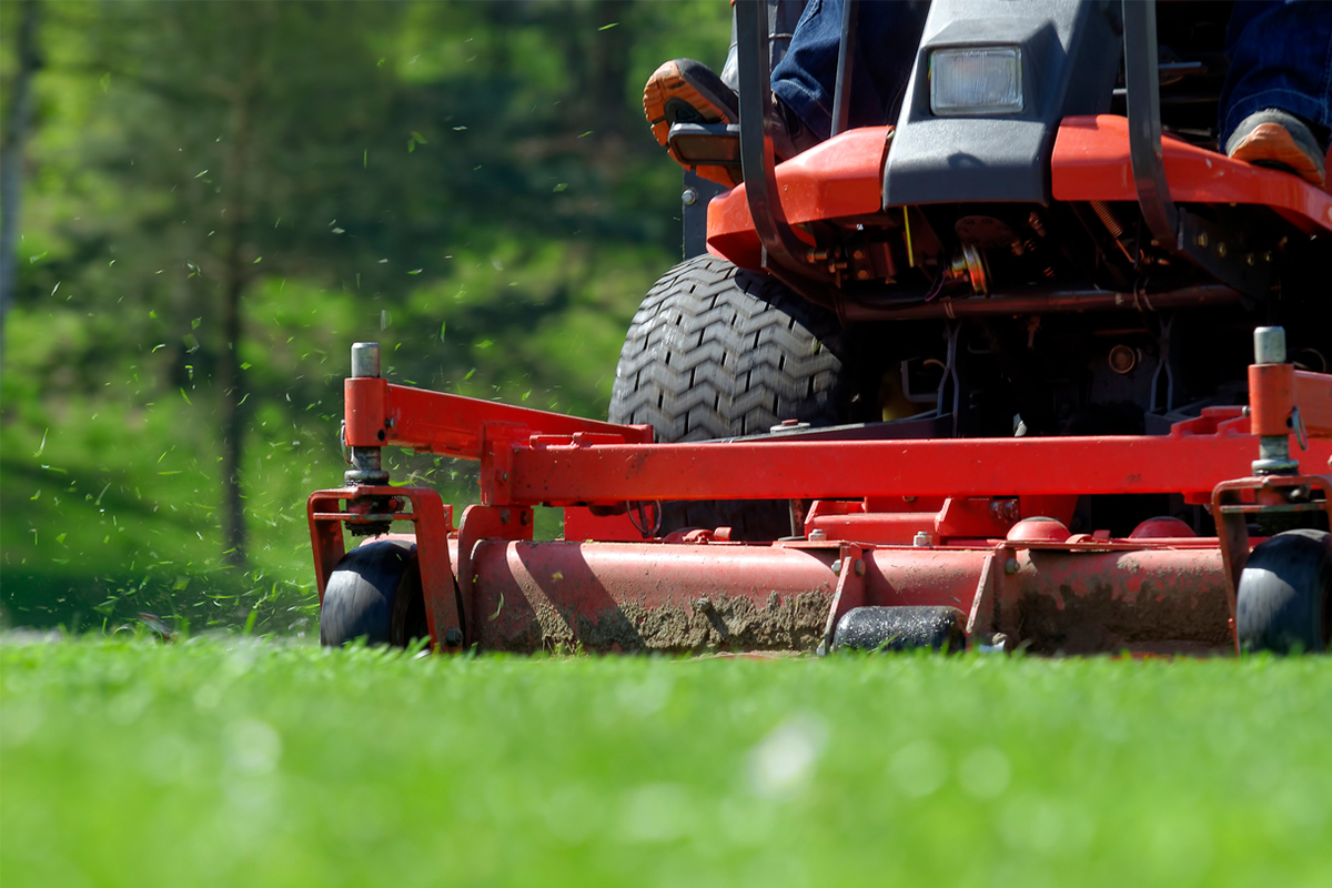 5 Things Your Lawn Care Business Should