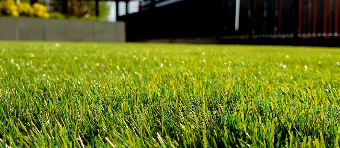 A close up of a neatly trimmed lawn with a house in the background.